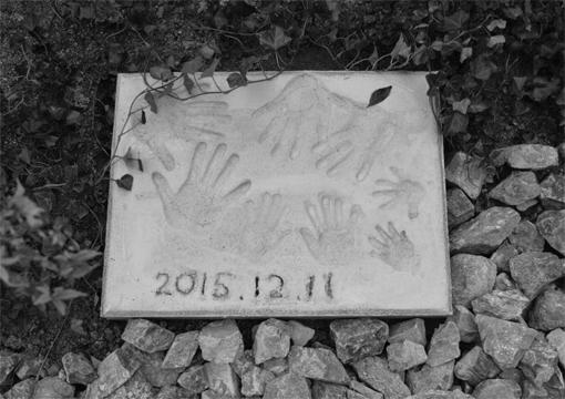 20151208-_______________________________________.jpg