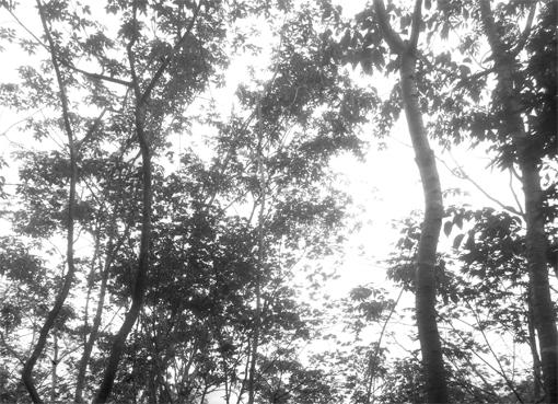 20160912-_________________________________.jpg